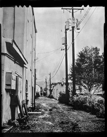 Telephone Wires, , 4x5 Lith Film in Caffenol